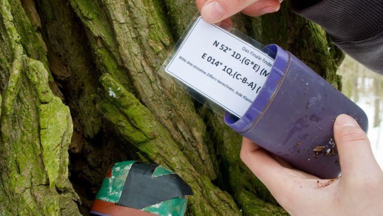 """Une """"cache"""" de geocaching, trouvée en forêt. Le geocaching est une discipline qui mêle chasse au trésor au GPS et course d'orientation. / © Patrick Pleul / MaxPPP"""