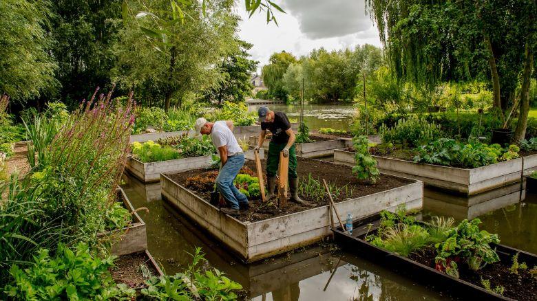 Les hortillonnages d'Amiens, ensemble de jardins flottants sur un dédale de 65 km de canaux, au cœur de la cité amiénoise / © AFP