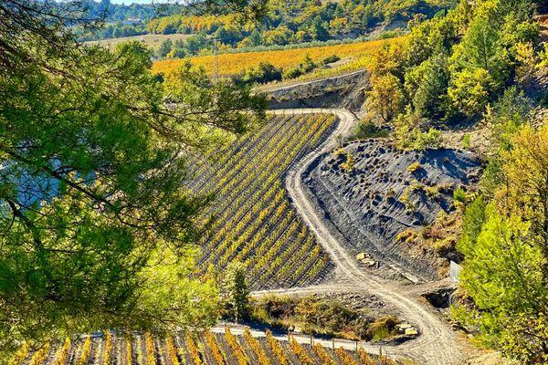 Un terroir viticole oublié