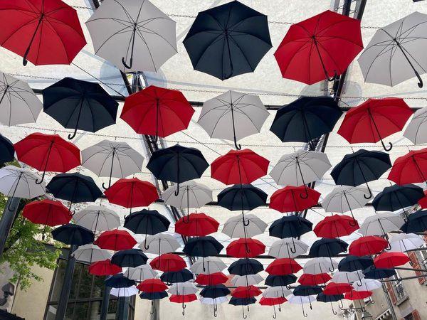 Ces 99 parapluies sont offerts par la Maison Piganiol.