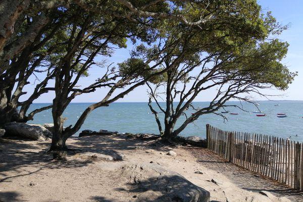 La plage des dames, un petit coin de paradis à Noirmoutier