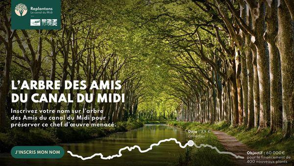 """L'objectif de l'association """"Replantons le canal du Midi"""" est de collecter 60.000 euros de dons."""